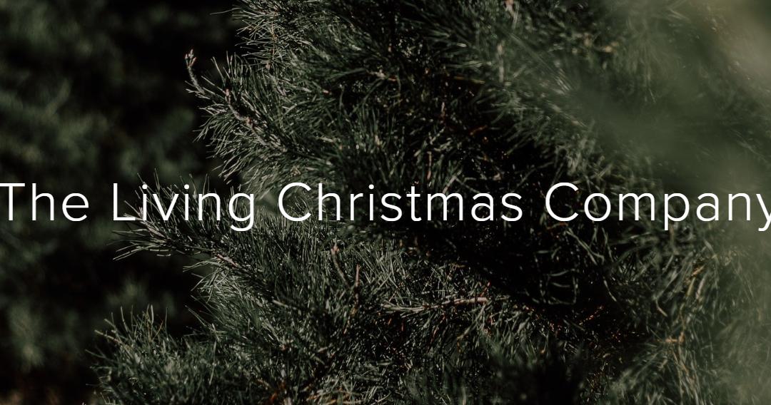 Alquila el árbol de navidad